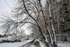 Winter in Bucharest stockfotos