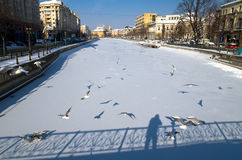 Winter in Bucharest - Dambovita river Royalty Free Stock Image