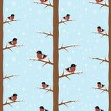 Winter bullfinch bird seamless pattern Royalty Free Stock Photography