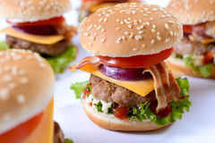 Winter burger Royalty Free Stock Photo