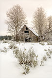 Winter Cabin in the forest of Idaho Royalty Free Stock Image