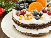 Winter cake Royalty Free Stock Image