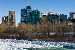 Winter in Calgary 2 Royalty Free Stock Photos