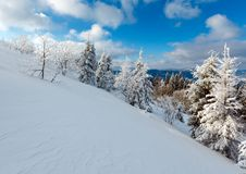 Winter mountain snowy landscape. Winter calm mountain landscape with beautiful frosting trees and snowdrifts on slope Carpathian Mountains, Ukraine Royalty Free Stock Photos