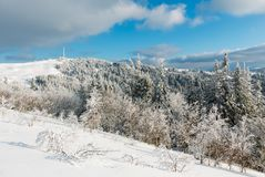 Winter mountain snowy landscape. Winter calm mountain landscape with beautiful frosting trees and snowdrifts on slope Carpathian Mountains, Ukraine Royalty Free Stock Image