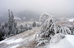 Winter calm mountain landscape Royalty Free Stock Photography