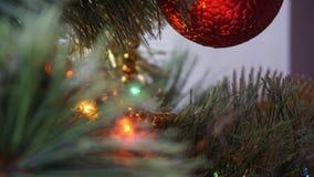 Winter came. Christmas tree. stock photography