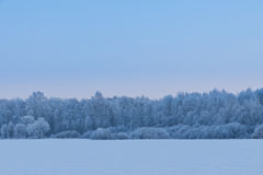 Winter came Stock Photography