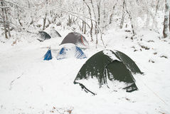 Winter camp in the forest Royalty Free Stock Images