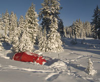 Winter camp among the trees Royalty Free Stock Image
