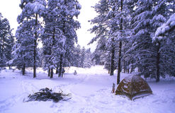 Winter Camping. In Flagstaff Arizona Stock Photography