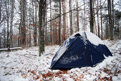 Winter camping. Camping in the forest during winter royalty free stock images
