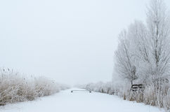 Winter canal in the fog Royalty Free Stock Image