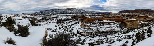 Winter canyon in Arizona. Covered with clean white snow Stock Image