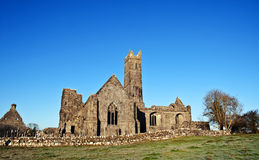 Winter capture of a ancient ruin abbey in ireland Royalty Free Stock Photo