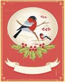 Winter card stock photo