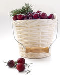 Winter card - Cranberries in bucked shaped vase with Christmas tree twig Stock Image