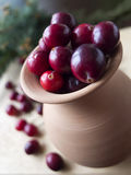 Winter card - Cranberries in the ceramic jug Stock Photos