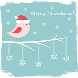 Winter card with cute bird Stock Photo