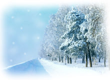 Winter card with snowy road Royalty Free Stock Image