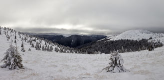 Winter Carpathian mountains Royalty Free Stock Photography