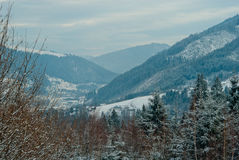 Winter Carpathian mountains, covered with snow, panorama view Stock Photo