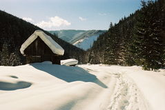 Winter Carpathians Stock Images