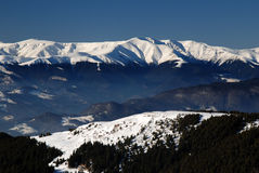 Winter in Carpathians stock photography