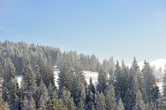 Winter in Carpathians. Small mountain village in Carpathian Mountains in winter Stock Image