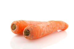 Winter carrots Royalty Free Stock Photo