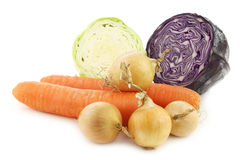 Winter carrots, brown onions, red cabbage and pointed cabbage Stock Images