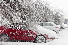 Cars covered with fresh white snow Royalty Free Stock Photo