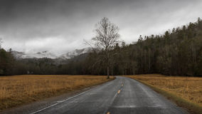 Winter in Cataloochee Valley, Great Smoky Mountains National Par Stock Image