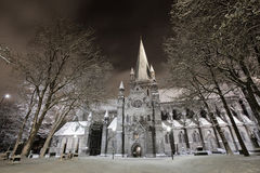 Winter Cathedral. The Nidarosdomen Cathedral in a winter night Stock Images