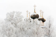 The winter cathedral Royalty Free Stock Photo