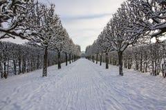 Winter in Catherine park, Tsarskoe Selo, St. Petersburg, Russia. Winter pond in Catherine park, Tsarskoe Selo, St. Petersburg, Russia stock photography