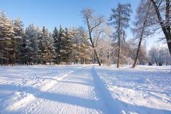 Winter in Catherine park, Tsarskoe Selo, St. Petersburg, Russia. Winter pond in Catherine park, Tsarskoe Selo, St. Petersburg, Russia stock photo
