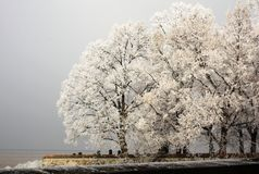Winter Cemetery. View of a winter cemetery with frozen trees Royalty Free Stock Photography