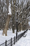 Winter in Central Park Royalty Free Stock Images