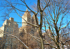 Winter in Central Park. Central Park ( West Side ) Winter 2013. View of Central Park West Royalty Free Stock Photos