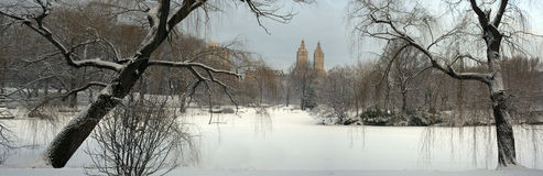Winter in Central Park Stock Photos