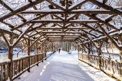 Winter in Central Park Stockbild