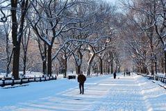 Winter, Central Park Royalty Free Stock Photos