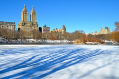 Winter in Central Park. New York. Royalty Free Stock Images