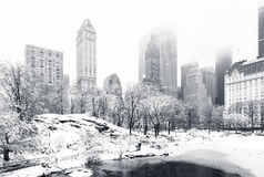 Winter in Central Park, NY Royalty Free Stock Images