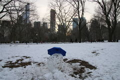 Winter in Central Park Stock Photography