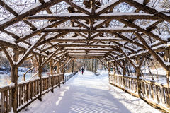 Winter in Central Park. Central Park wook tunnel cover with snow Stock Image