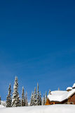 Winter chalet. Log chalet in winter looking out on snow and trees with bright blue sky - vertical orientation with copy space royalty free stock image