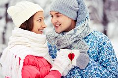 Winter cheers Royalty Free Stock Images
