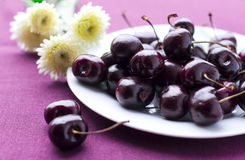Winter cherry Stock Image